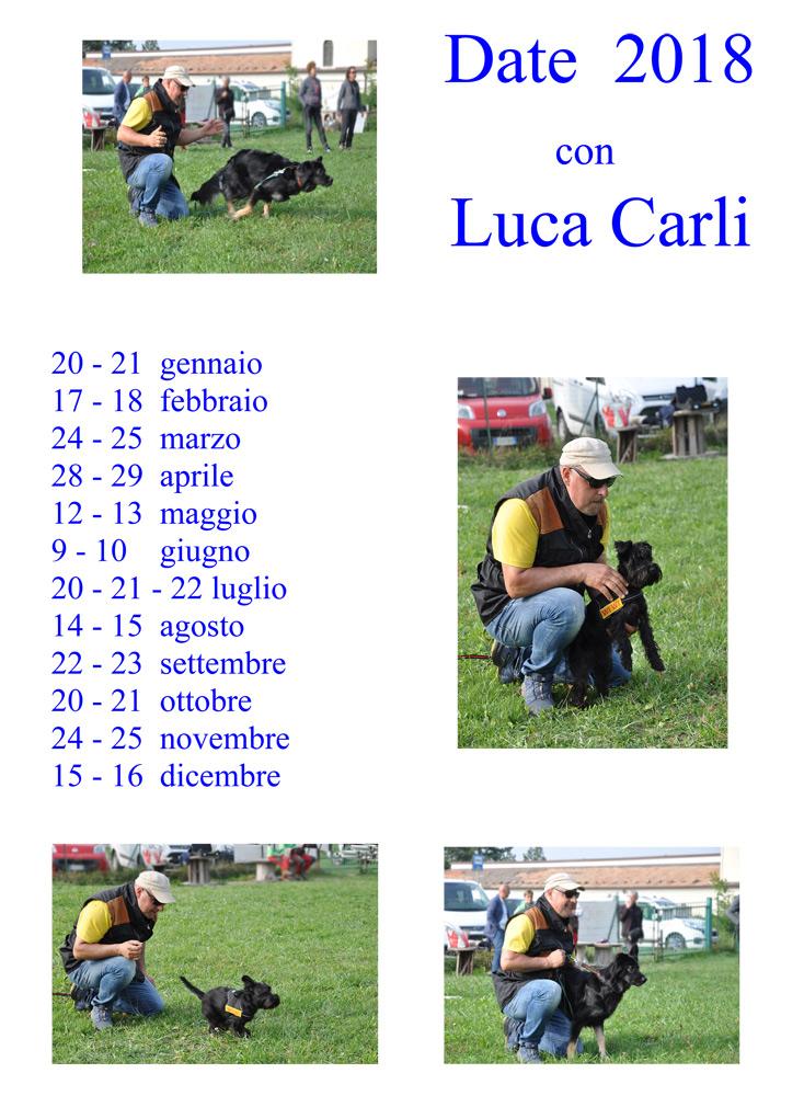 LOC.-CARLI